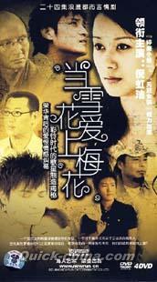 恋愛映画ドラマ『当雪花帯上梅花』経済版DVD全4枚組